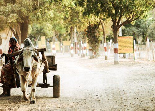 UPF Prayer Journeys to India